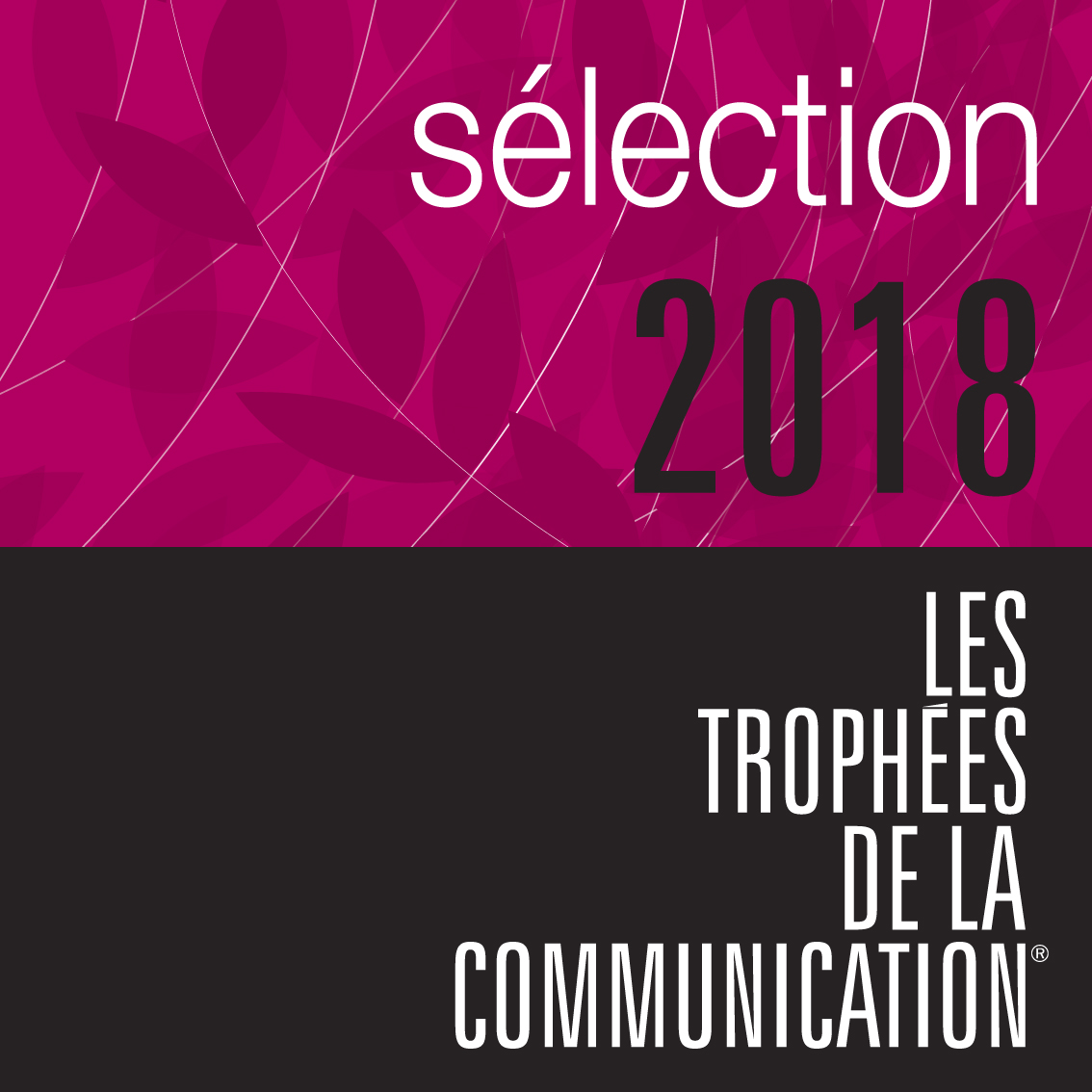 SELECTION 2018